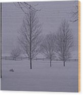 Winter Silhouettes Wood Print