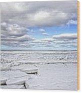 Winter Skaket Beach Wood Print