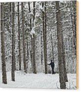 Winter Ski Wood Print