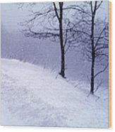 Winter Slope Wood Print