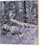 Winter Solemn Wood Print