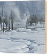 Winter Solitude Wood Print by Sandra Bronstein