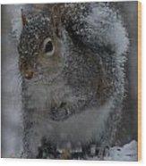 Winter Squirrel 1 Wood Print