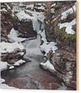 Winter Still Has Its Icy Grip On Adams Falls Wood Print