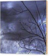 Winter Storm 2 Wood Print