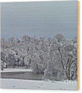 Winter Storm 2010 Wood Print