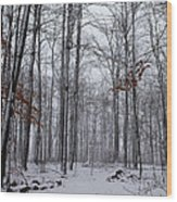 Winter Storm In The Forest Wood Print