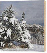 Winter Storm On Natural Bridge - D001598 Wood Print