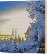 Winter Sunburst Wood Print