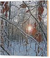 Winter Sunset 2 Wood Print