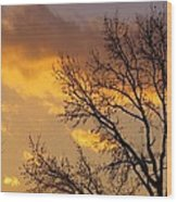 Winter Sunset In Pa Wood Print