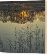 Winter Sunset Reflection Wood Print