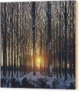 Winter Sunset Through The Trees Wood Print