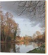 Winter Sunshine On The Wey Canal Surrey Uk Wood Print