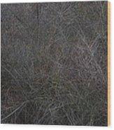 Winter Tangle Wood Print