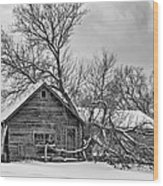 Winter Thoughts Monochrome Wood Print