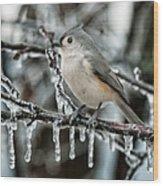 Winter Titmouse Wood Print