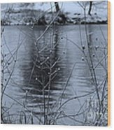 Winter Touch Wood Print