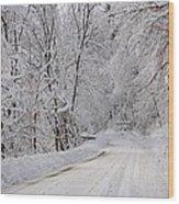 Winter Travel Wood Print