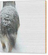 Winter Traveler Wood Print by Karol Livote