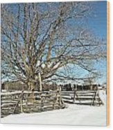 Winter Tree And Fence Wood Print