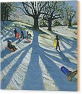 Winter Tree Wood Print by Andrew Macara