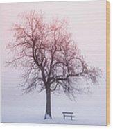 Winter Tree In Fog At Sunrise Wood Print