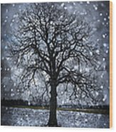 Winter Tree In Snowfall Wood Print