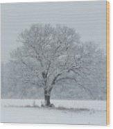 Winter Tree Ipswich Ma Wood Print