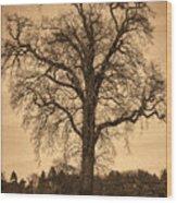 Winter Tree - Old Wood Print