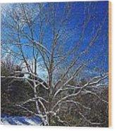 Winter Tree On Sky Wood Print