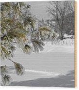 Winter Tree  Wood Print by Paulina Szajek