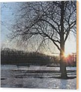 Winter Tree Sunset Wood Print