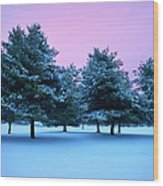 Winter Trees Wood Print by Brian Jannsen