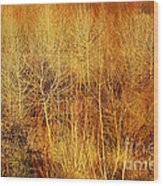 Winter Trees Color 4 Wood Print