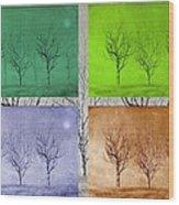 Winter Trees  Wood Print by David Dehner