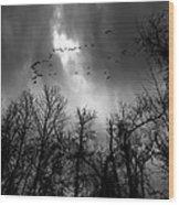 Winter Trees Moving Sky Wood Print