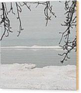 Winter Under The Apple Tree Wood Print