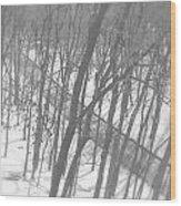 Winter Urban Wood Wood Print