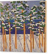 Winter Valley Wood Print