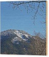 Winter Vista From Grants Pass Wood Print