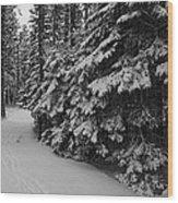 Winter Walk Wood Print