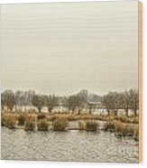 Winter Water Landscape Wood Print