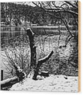 Winter Waterscape Wood Print