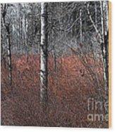 Winter Wetland I Wood Print
