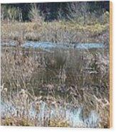 Winter Wetlands Of Alabama Wood Print