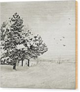 Winter White Wood Print by Julie Palencia