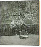 Winter Willow And Snow Covered Seat Wood Print