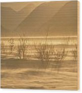Winter Wind Storm W Blowing Snow Wood Print