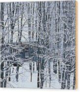 Winter Window Wood Print